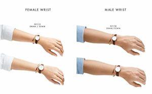 Daniel Wellington Femme Analogique Classique Quartz Montre avec Bracelet en Acier Inoxydable DW00100164